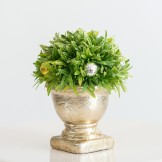 Rent: Small Decorative Topiary Ball Plant (Gold Vase)