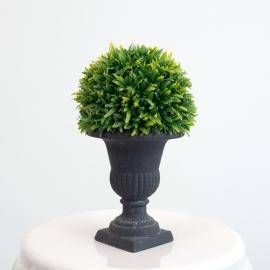 Medium Decorative Topiary Ball Plant in Black Vase