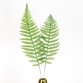 Tropical Fern Leaf (set of 2)