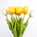 Rent: Artificial Tulips (set of 8)