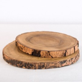 Large Wood Slices (set of 2)
