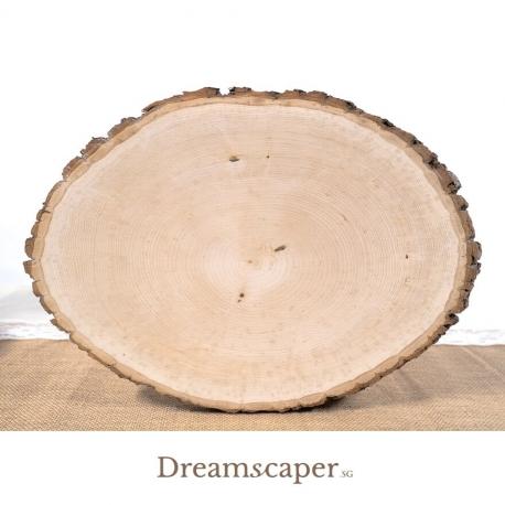 Large Wood Slice Singapore