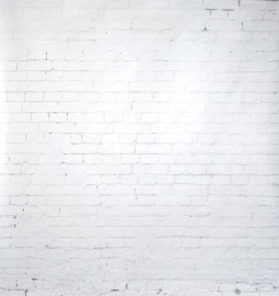 White Brick Wall Photo Backdrop