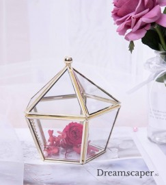 Rent: Gold Hexagon Glass Box