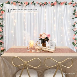 ROM Solemnization Package Singapore