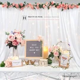 Marriage Proposal Setup