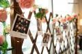 Photos on fence decor