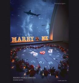 Proposal at Resort World Sentosa Ocean Suites