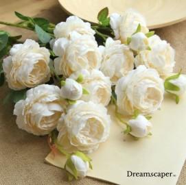 Elegant Romantic Wedding Decoration Singapore