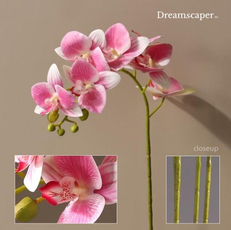 Realistic Artificial Orchid Singapore