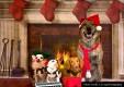 Christmas Dogs Photoshoot