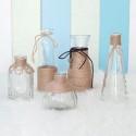 Rent: Rustic Glass Vases (set of 5)