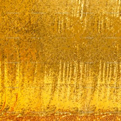 Rent: Gold Sparkles Cloth Backdrop