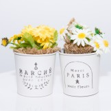 Rent: Small Rustic Flower Buckets (set of 2)